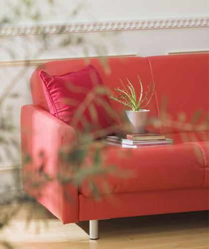 freshhome-sofa-002